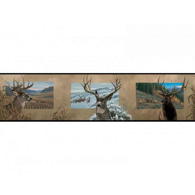 Lake Forest Lodge Bear Border Wildlife Wallpaper Decor