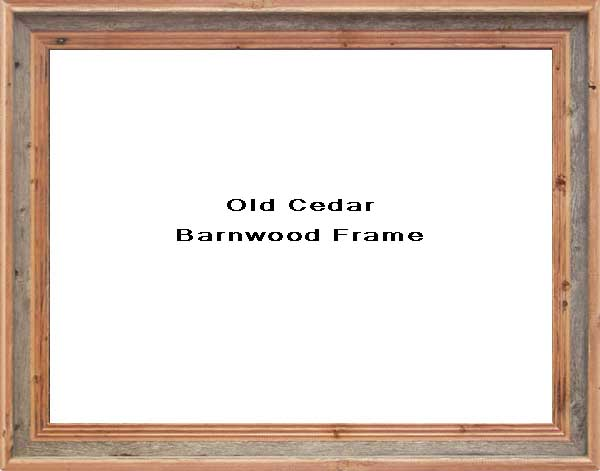 Old Cedar Barnwood Frame