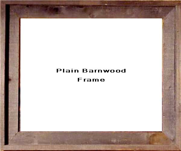Plain Barnwood Frame