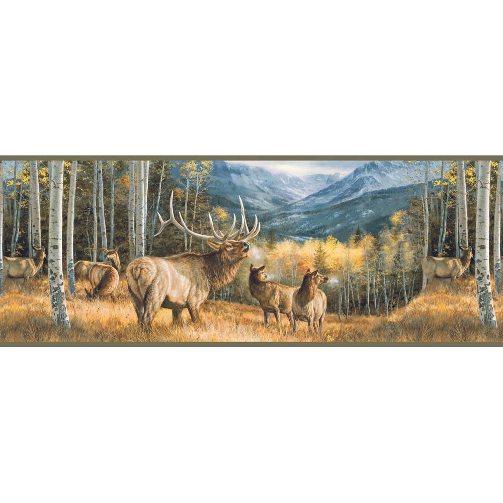 Lake Forest Lodge Elk Border