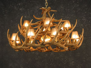 Whitetail 30 Antler Chandelier - Angled Bottom View