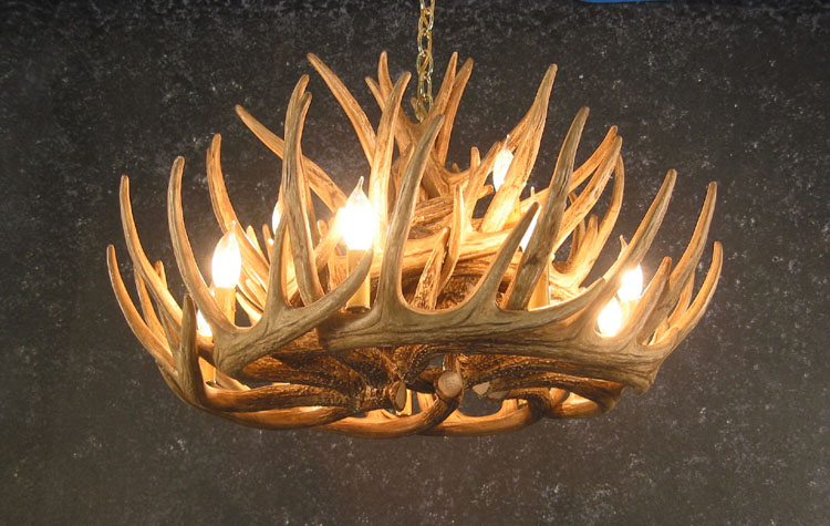 Whitetail 12 antler cascade chandelier antler chandelier whitetail 12 antler cascade chandelier bottom view aloadofball Gallery